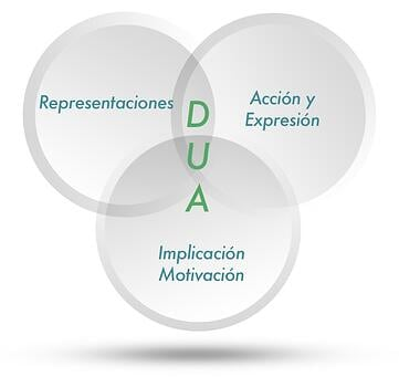 implementar el DUA